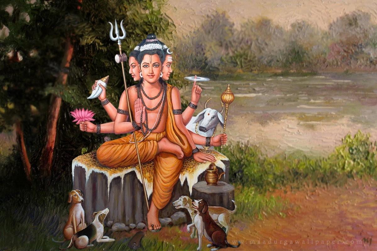 Avadhūta: His Nature, His Freedom
